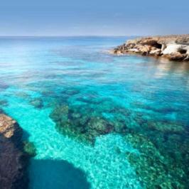 Кипр, форум и деловая поездка «Свое Дело на земле»